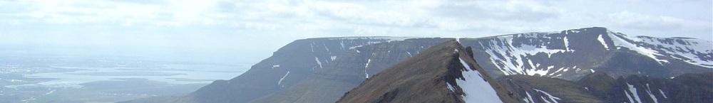 Þórhallur Örn Guðlaugsson - Hausmynd
